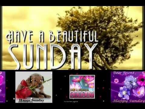 Happy Sunday GreetingsQuotesSmsWishesSayingECardWallpapers Whatsapp