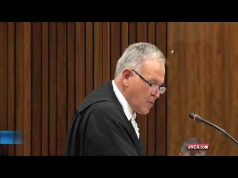 Pistorius's disability affected his ability to think clearly: Roux