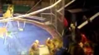 circo en altepexi ataca un leon a su domador