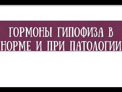 Анализ на гормоны гипофиза в норме и при патологии - meduniver.com