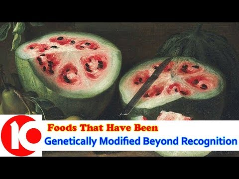 10 Foods That Have Been Genetically Modified Beyond Recognition   List 10