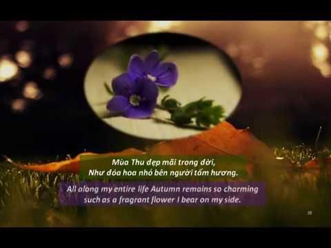 Thơ TỪ MÙA THU ẤY - SINCE THAT AUTUMN (TXĐ Phỏng Dịch) - HoàiCảm-MùaThuKhôngTrởLại-MộtMình 11-2014