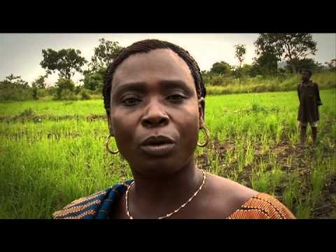 The story of a sustainable rice chain in Benin