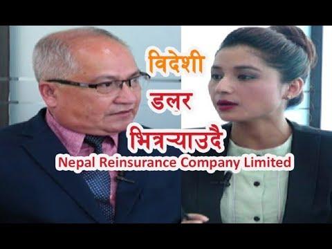 विदेशी डलर नेपाल भित्र¥यादै छौँ :Chirayu Bhandari ||Nepal Reinsurance Company Limited|| Bank & Bima