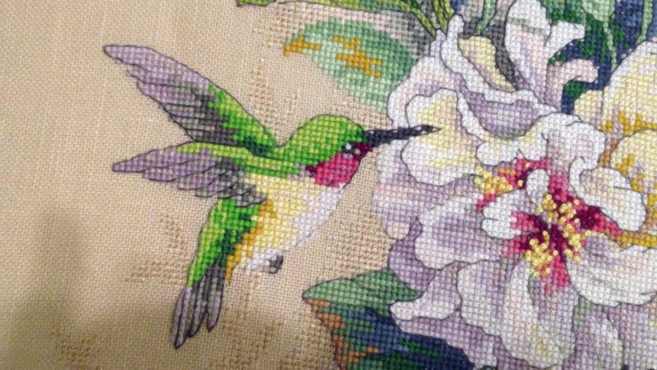 Вышивка сад колибри