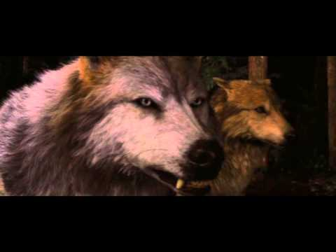 Les cullens VS les Quileutes Breaking dawn part 1 VF