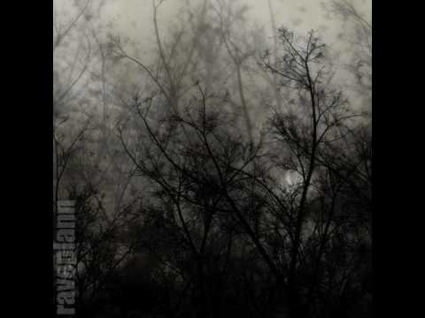 Dark forest Deidriim Antiquis Scientia Naturalis 4 3 2014