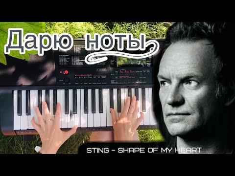 Sting (Стинг) - Shape Of My Heart на синтезаторе | Дарю ноты и аккорды на пианино