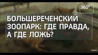 Большереченский зоопарк: где правда, а где ложь?