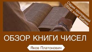 4. Обзор книги Числа - Яков Платонович