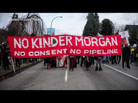 What is the Trans Mountain Oil Pipeline?