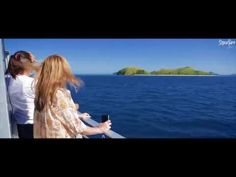 Fiji Islands - Overview and Turtle Calling (Compiled Videos)