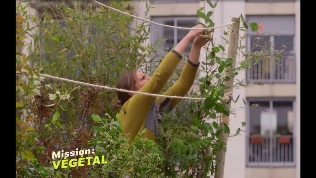 comment aménager sa terrasse avec un cocon de verdure ? - youtube