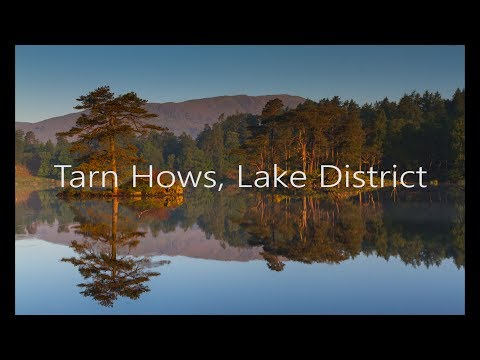 Tarn Hows In The English Lake District At Dawn Ep
