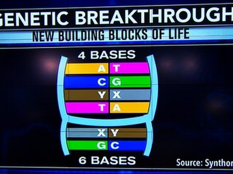 Living organism made with artificial genetic code