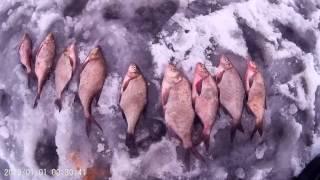 Відкриття сезону нічний зимової риболовлі, на Вилейском водосховищі