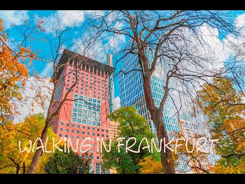 Walking in Frankfurt am Main