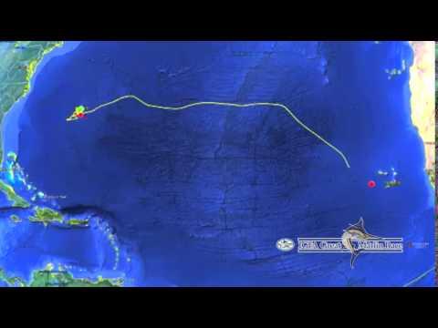 IGMR Bermuda 2016 - Galati Yachts in lead