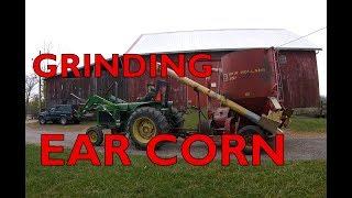 helping the neighbor grind ear corn!