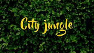 Miugo #CityJungle - Noce Zakupów