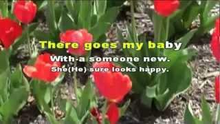 Bye Bye Love (Karaoke)