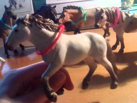 Moji nový koně a stáj