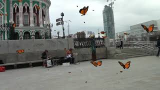 р Исеть Рыбалка в г Екатеринбург Рыбалка прогулка в городе