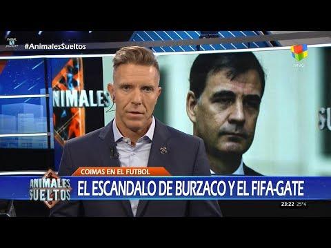 """Editorial de A.Fantino sobre """"las coimas del FIFA-Gate"""", en """"Animales sueltos"""" - 14/11/17"""