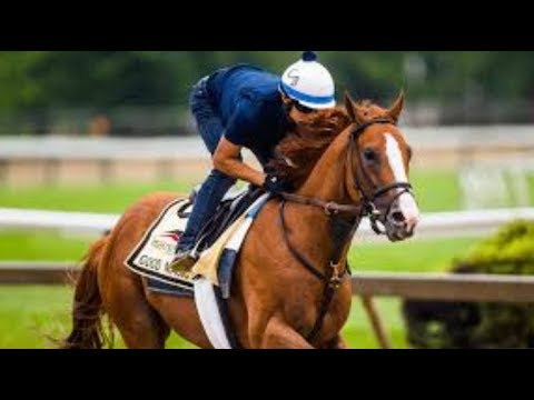 Three long shots with a chance to upset Justify in the Preakness Stakes