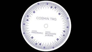 Cosmin TRG - Panoramic