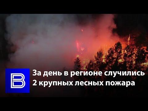 Готовились привлечь авиацию: как спасали людей и животных от пожаров в воронежских лесах