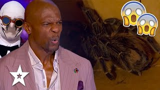 Scary Magician Brings SPIDER Out TERRIFYING Judges on America's Got Talent 2021 | Got Talent Global