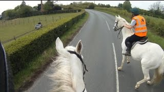Why Wide and Slow is so important when passing horses on roads.