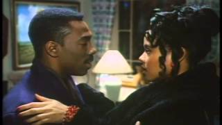 Boomerang Trailer 1992