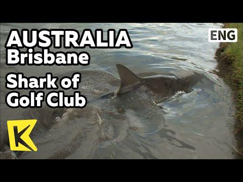 【K】Australia Travel-Brisbane[호주 여행-브리즈번]골프클럽 호수 상어/Carbrook Golf Club/Shark/Hazard/Lake/Queensland
