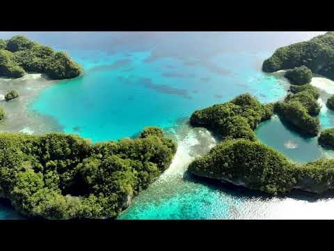 Palau Rock Islands - Palau Siren liveaboard - April 2018