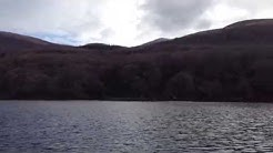 Tomies Woods from Lough Leane