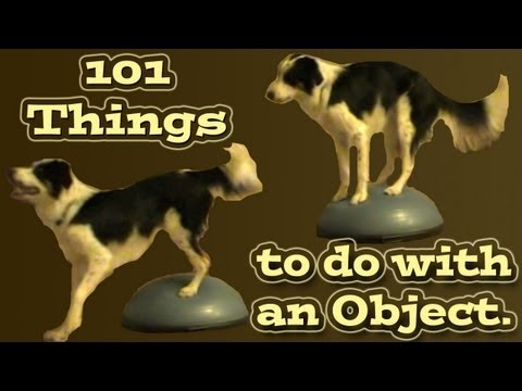 101 Things to do with an object - Clicker Dog Training