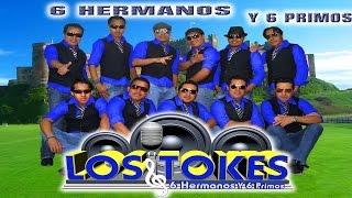 Los Tokes - Concierto 2015