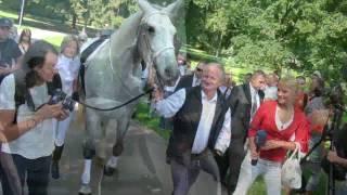 Šuplera gājiens ar balto zirdziņu (www.dinamofans.eu)
