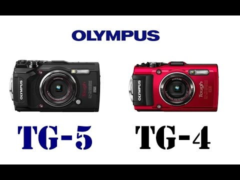 Olympus Tough TG-5 vs Olympus Tough TG-4