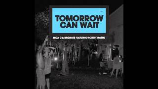 Luca C & Brigante feat. Robert Owens - Tomorrow Can Wait (Art Department Remix)