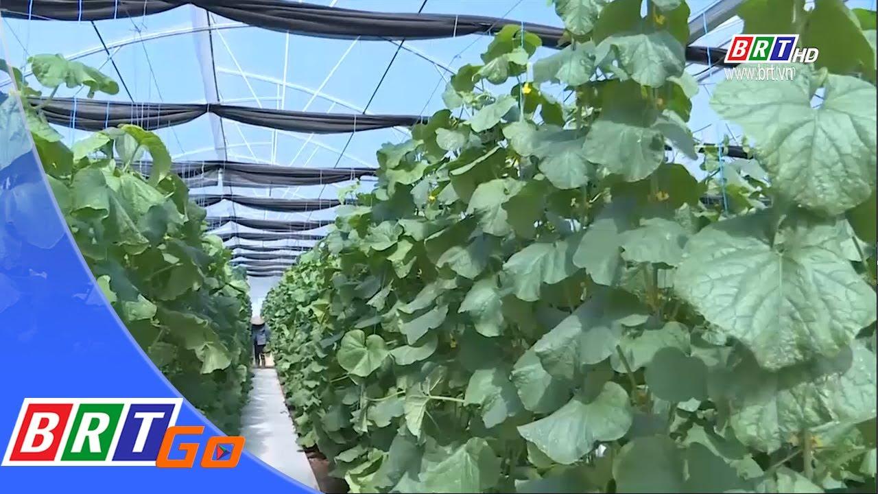 Ứng dụng công nghệ cao- Hướng đến nền nông nghiệp bền vững   BRTgo