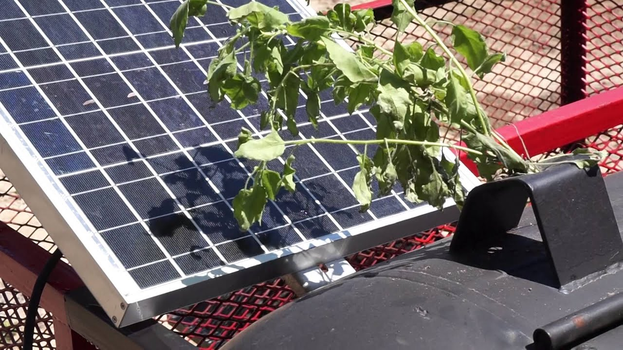 How Tree Shadow Affects Solar Panel Grid Tie Off Grid