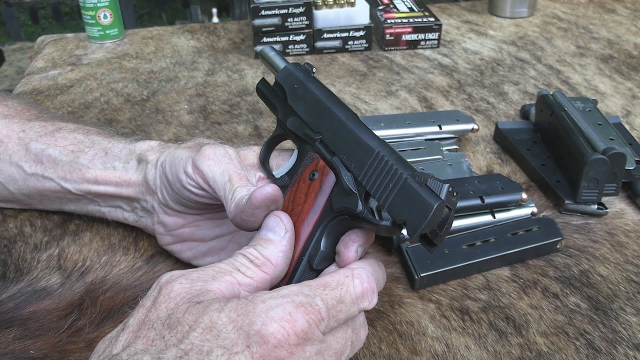 Dan Wesson Guardian Chapter 2