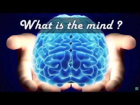 What Is The Mind   QA Series On Mind   Chaitanya Charan
