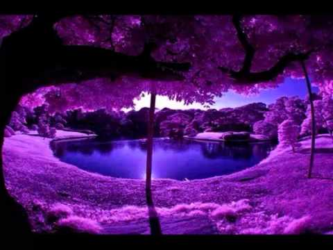 Purple/Violet Energy Meditation