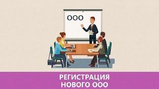 Регистрация ООО | Как открыть ООО самостоятельно: пошаговая инструкция<