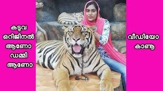 Selfie with Real Tiger... കടുവകളോടൊപ്പം സെൽഫി എടുക്കാം Thailand Trip