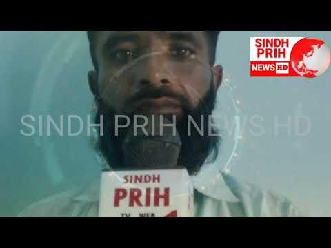 SINDH PRIH NEWS